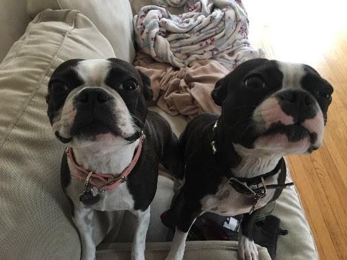 Lola&Charlie