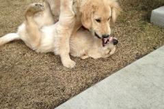Bo&George
