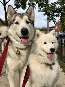 Tess and Hudson