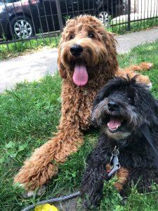 Oscar and Phoebe